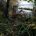 Gate to nowhere by Julian Easten