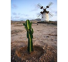 Canarian Windmill Photographic Print