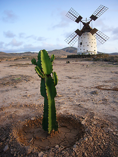 Canarian Windmill by Madeleine Forsberg