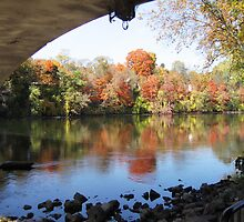 Fall under a bridge by Wayne George