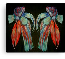 Betta Spendens - In Reflection Canvas Print