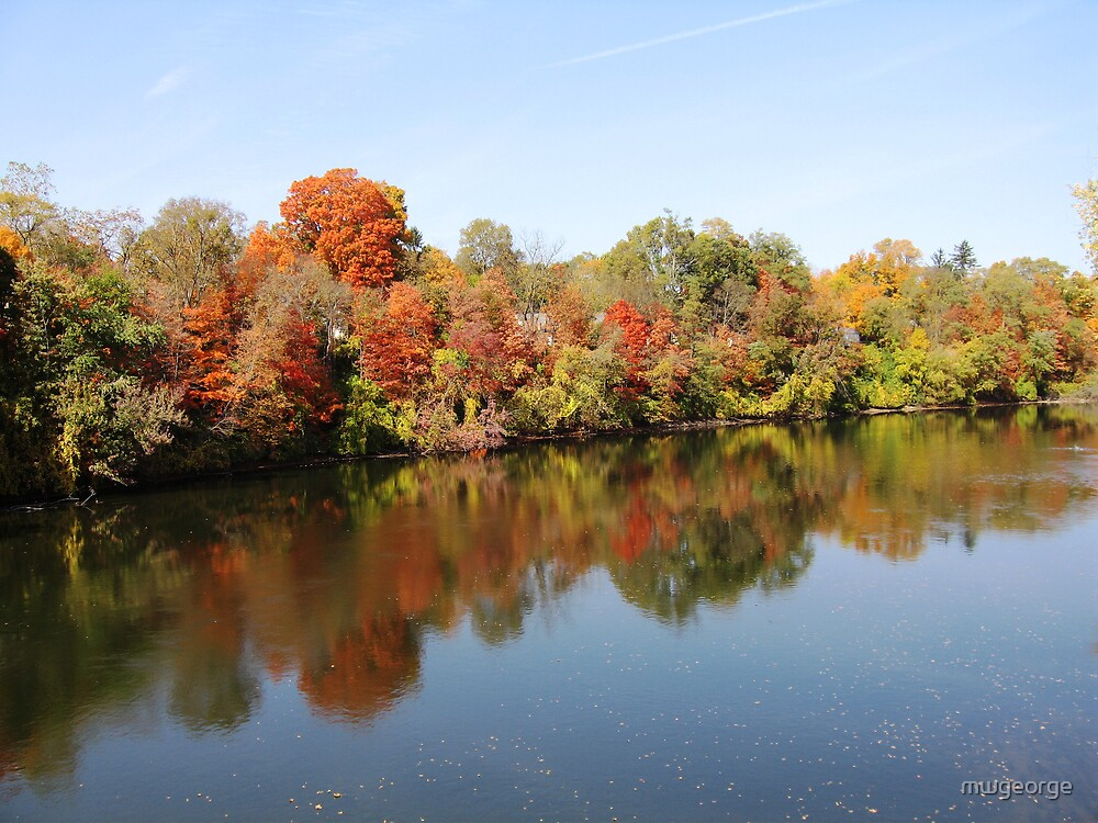 Fall Riverview by Wayne George