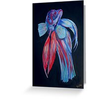 Siamese Fighting Fish Greeting Card