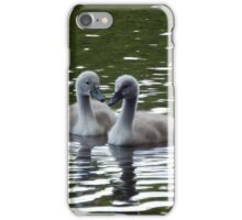Cygnets on the lake iPhone Case/Skin