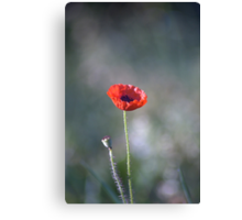 We Will Remember Our Fallen Heroes... Canvas Print