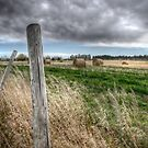 Fence Post and Bails by Myron Watamaniuk