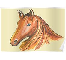 Horse Mane Poster