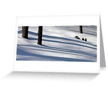 Shadows on the Snow - Dunrobin Ontario Greeting Card