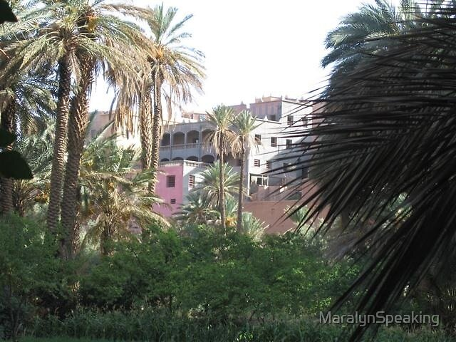Eden in Southern Morocco by MaralynSpeaking
