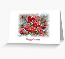 Red Berry Christmas Greeting Card