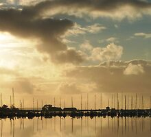 Kilrush Creek Marina by Brian220