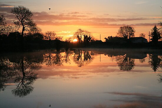 Kiltulagh Morning  by Sean Farragher