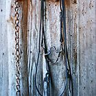 Bridle on Wall by Emily Peak