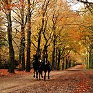 Another magic autumn ride by jchanders