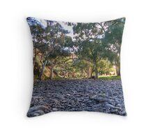 Flinders .. or Murraylands????? Throw Pillow