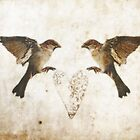 Common Sparrow Love by pixel8it
