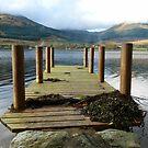 A Walk on the Loch by Lynn Bolt