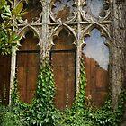 Grungy Window by Alexandra Lavizzari