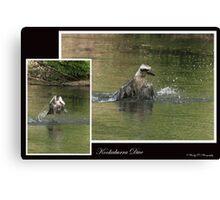 Kookaburra Dive Canvas Print