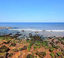 Rocky Shore by Paul Bettison