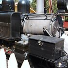 Puffing Billy # 10 by Virginia McGowan