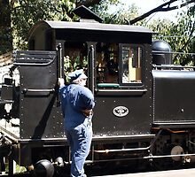 Puffing Billy  by Virginia McGowan