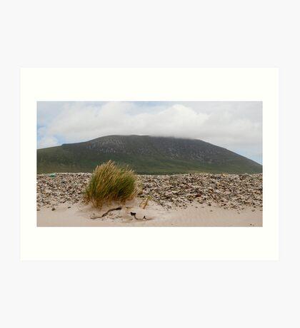 Windswept Achill Art Print