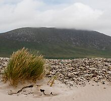 Windswept Achill by Declan Howard
