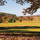 Autumn in Vann's Valley by Patricia Montgomery