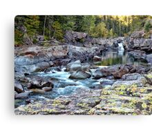 MacDonald Creek 4 Canvas Print