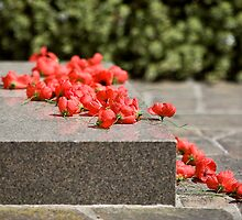 Remembrance Day  by Yanni