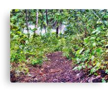 Path to the River Canvas Print