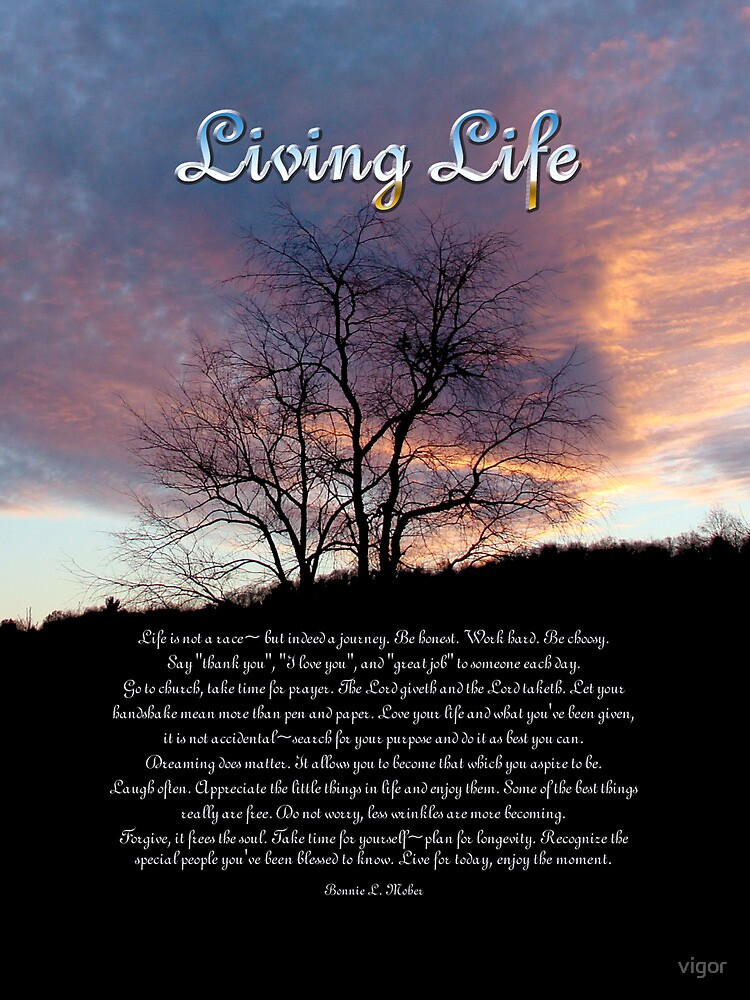 Living Life by vigor