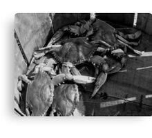 Basket of Blue Crabs_Black and White Canvas Print