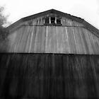 Tall barn by Roxygirl