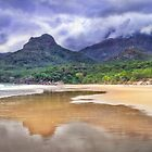 Hinchinbrook Island  by Mike Arnott