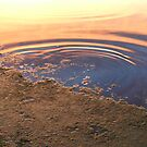 Ripple by PDWright