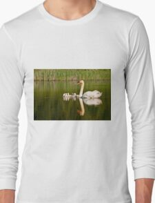 Mute Swan and Babies Long Sleeve T-Shirt