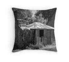 Renovator's Delight- Picadilly Cottage Throw Pillow