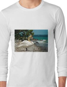 On The Shores Of Lake Ontario Long Sleeve T-Shirt