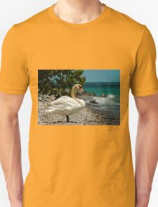 On The Shores Of Lake Ontario T-Shirt