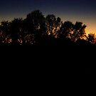 evening sky 5 by Tee Mezz