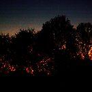 evening sky 6 by Tee Mezz