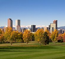 Denver Skyline by Reese Ferrier