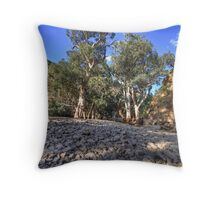 Rocky River Bed Throw Pillow
