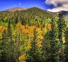 Fall on the Mountain II by Saija  Lehtonen