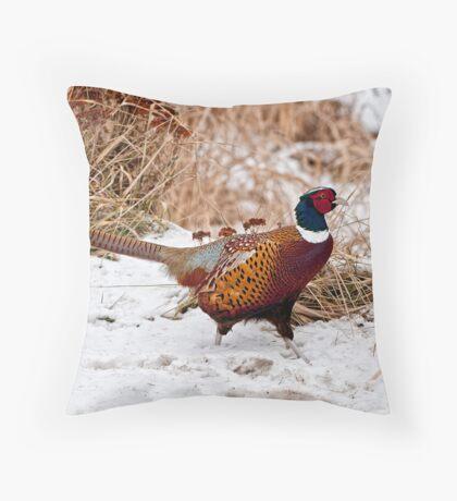 Ringed Neck Pheasant Throw Pillow