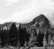 Crossing Snoqualmie Pass by rocamiadesign