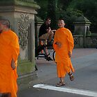 3 Orange Monks by Diane Philips