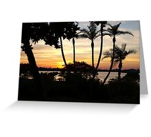 Palm stand Greeting Card